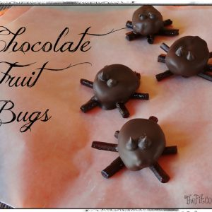 Paleo chocolate fruit bugs