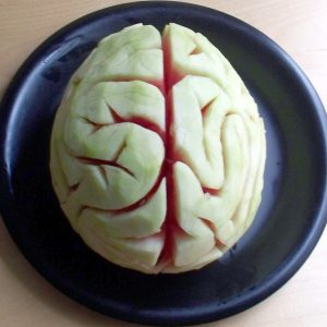 Paleo Halloween melon brain head