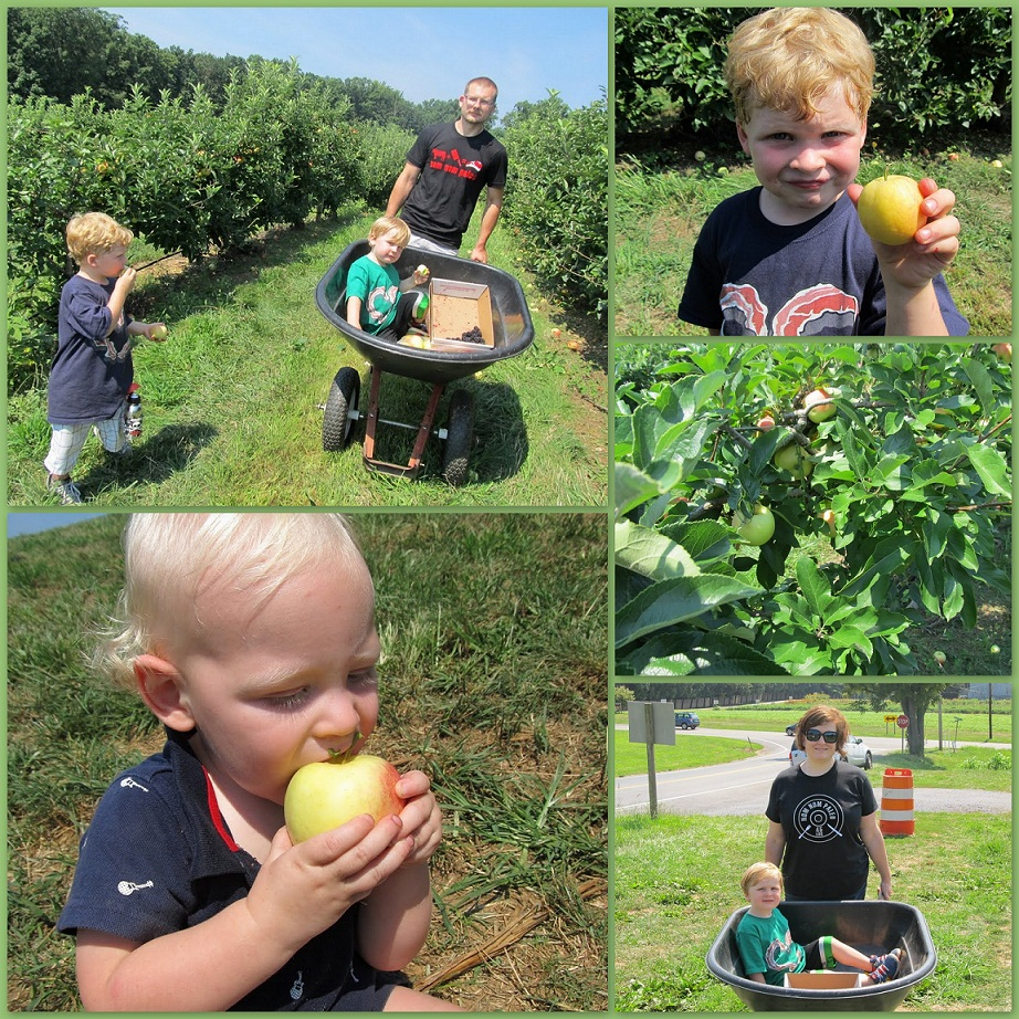 Paleo Parents apple picking