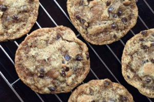 primal chocolate chip cookies, grain free