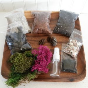 diy terrarium set for kids